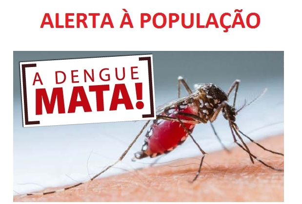 Risco de epidemia de dengue coloca Mandaguari e região em alerta
