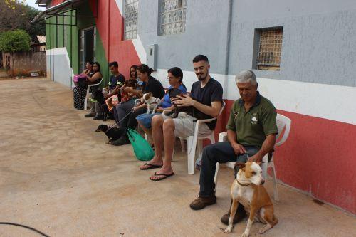 Inscrições para castração animal estão sendo feitas no salão comunitário do 5 Conjuntos