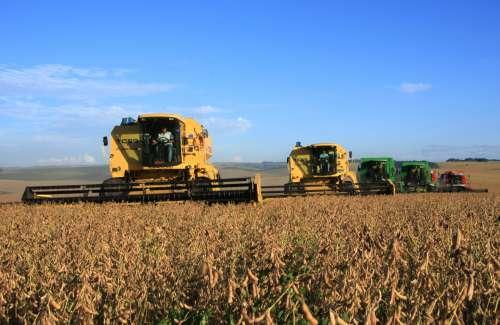 Bom desempenho agropecuário impulsiona o Produto Interno Bruto no Paraná