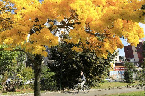 Primavera será de calor e poderá chover acima da média no Paraná