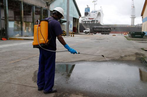Porto de Paranaguá reforça ações de combate à dengue