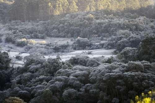 Frio ficará mais intenso e Paraná terá -5 graus nesta quarta-feira