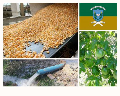Relatório da Secretaria de Agricultura e Meio Ambiente referente ao mês de março de 2021