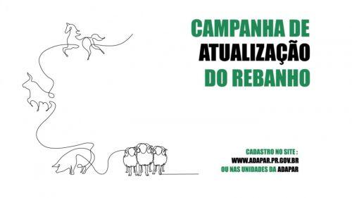 Campanha de atualização do rebanho: Produtor precisa atualizar cadastro de todos os animais