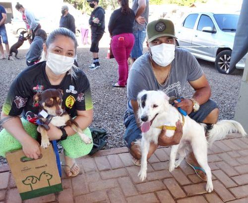 Castrapet oferece castração gratuita  de animais domésticos em São Tomé