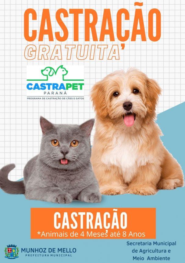 O Programa de Castração Permanente de Esterilização de Cães e Gatos CastraPet Paraná