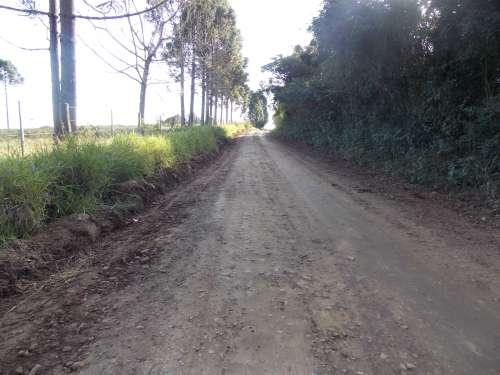 Aproximadamente 100km de estradas rurais estão sendo recuperadas no bairro Felisberto e arredores