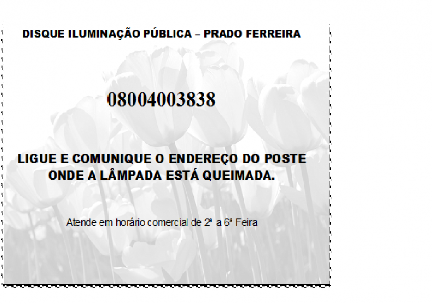 DISQUE ILUMINAÇÃO PUBLICA - PRADO FERREIRA