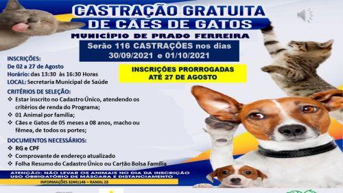 Anunciamos a PRORROGAÇÃO do Cadastro de Animais (Cães e Gatos), no Município de Prado Ferreira.