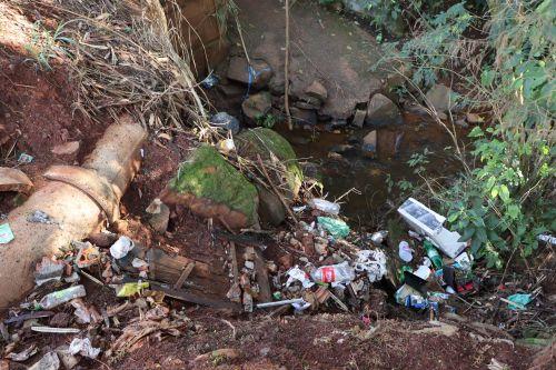 Prefeitura de Ivaiporã adere à campanha #ParanáMaisLimpo para comemorar Dia Mundial do Meio Ambiente