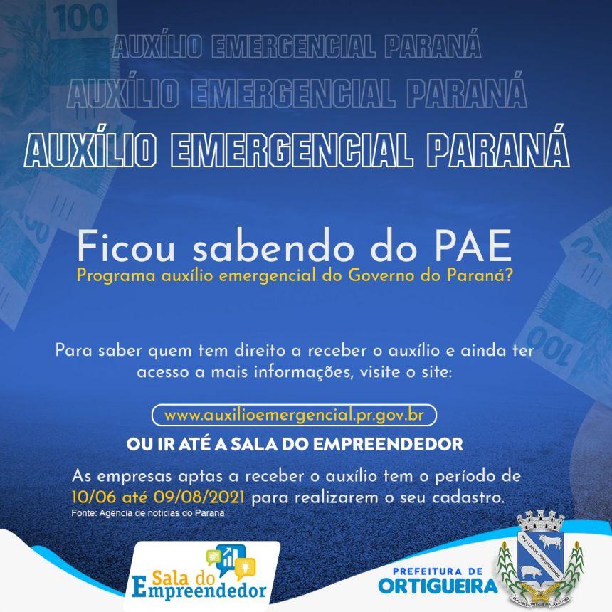 GOVERNO DO PARANA DISPONIBILIZA CONSULTA AO AUXILIO EMERGENCIAL PARA AS EMPRESAS