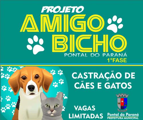 Projeto Amigo Bicho contará com a primeira fase de castração de cães e felinos