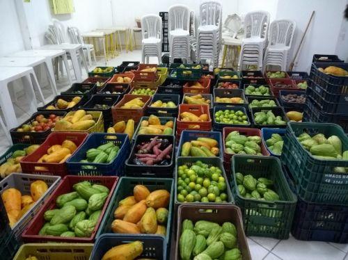 Segunda etapa da Campanha Solidária de Pontal do Paraná recebe mais 3,4 toneladas de verduras da Ceasa.