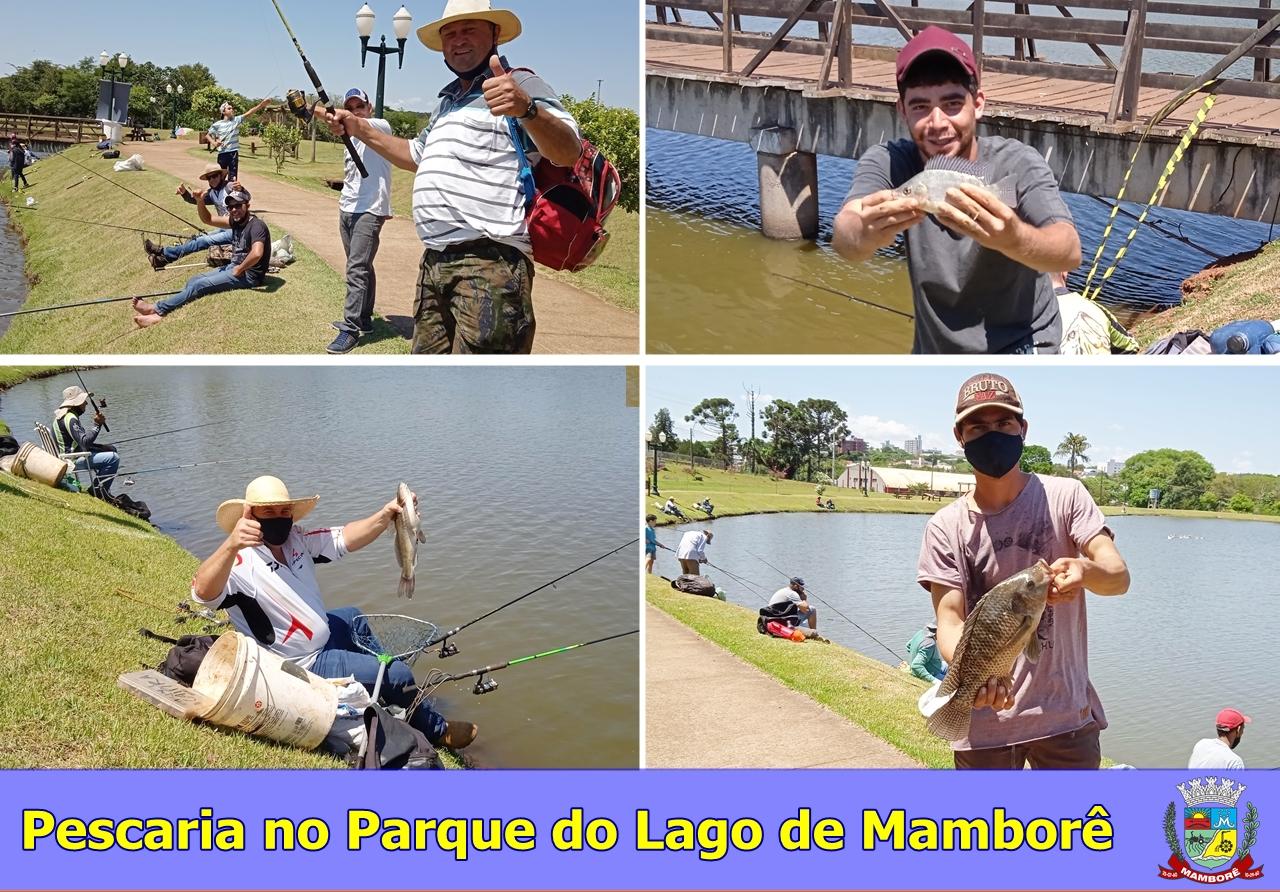 Neste domingo foi realizado a pescaria no Parque do Lago de Mamborê