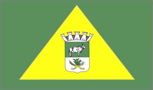 Bandeira do Município