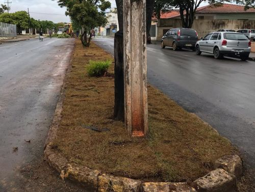 Arborização, troca de gramado Avenida Souza Naves e Terminal Rodoviário