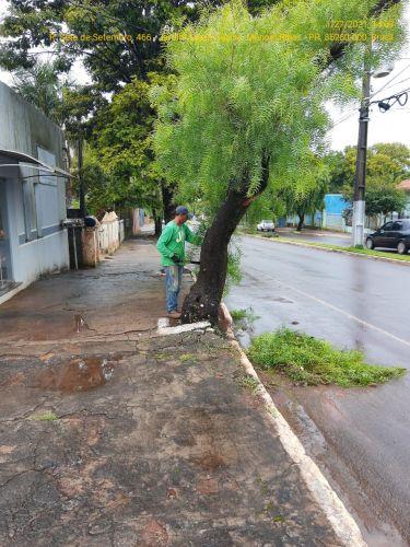 Limpeza de canteiros, corte de grama e manutenção dos terrenos públicos.