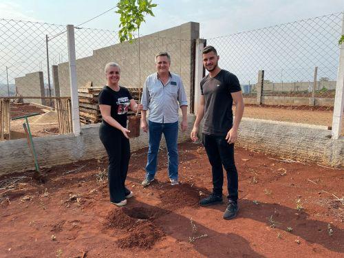 Prefeitura planta muda de árvore