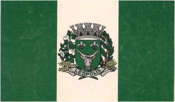 Figura 4. Bandeira Municipal