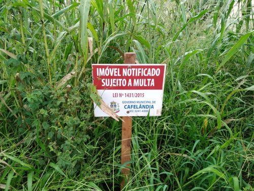 Prefeitura de Cafelândia começa a notificar lotes sujos do Bairro Jardim das Palmeiras