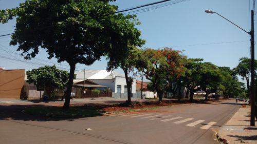 Começaram as obras de revitalização de canteiro central da Avenida Nilza de Oliveira Pipino