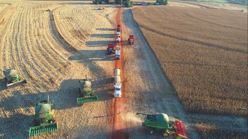 Ubiratã bate recorde na produção agropecuária