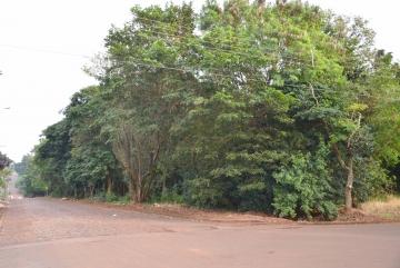 Diversas melhorias serão realizadas no Parque Ênio Pipino