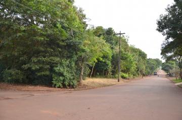 O Parque Ênio Pipino ocupa uma área de quase 5 alqueires de terra no perímetro urbano de Ubiratã