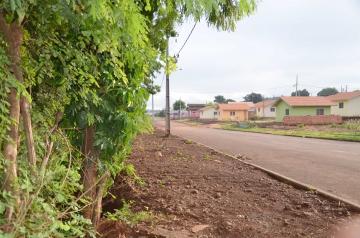 Esse valor servirá para de início revitalizar a parte externa do bosque, incluindo calçada ecológica e pista de caminhada