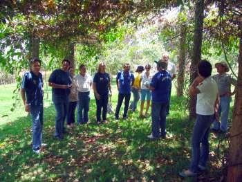 Sob a sombra de um maracujazeiro os visitantes receberam as explicações sobre o que é a Creche das Árvores