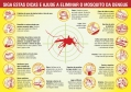 Dicas básicas para eliminar o risco de epidemia da dengue