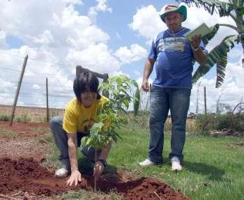 A presidente do SOS Cícero Nuto Figueiredo também adotou uma árvore