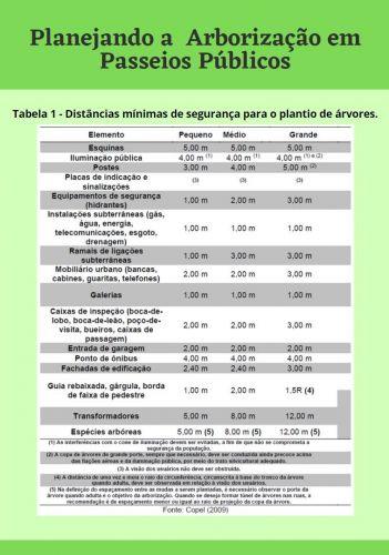 Manual de instrução para construção de calçadas acessíveis e arborização urbana