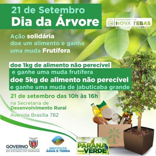 Dia da árvore dia de ação solidária
