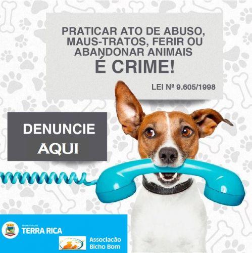 Denúncia de Maus - Tratos de Animais